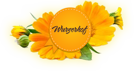 wurzerhof-ratschings.com
